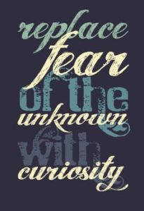 quote fear vs curiosity